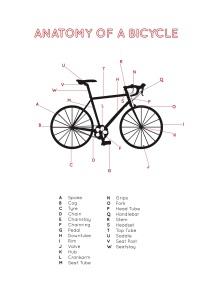 Bike anatomy2